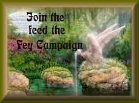 Feed The Fey!